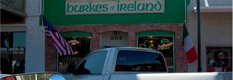 Burkes of Ireland
